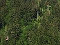 Juneau, AK, USA - panoramio (4).jpg