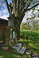Kříž u zelené turistické trasy mezi PP Velká Kobylanka a NPR Na Hůrkách, Hranice, okres Přerov.jpg