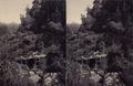 KITLV - 180503 - Kurkdjian, Ohannes - Soerabaya - Bridge over a river in Java - circa 1900.tiff