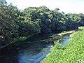 Kakita river, 20110918 A.jpg