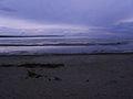 Kakumäe rand.JPG