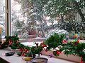 Kalamış Kış 2010 - panoramio.jpg