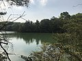 Kamataike Pond in Kasuya Research Forest of Kyushu University 7.jpg