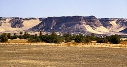 The Kaouar escarpment, forming and oasis in the Ténéré desert.