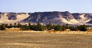 Deutsch: Das Kaouar-Tal in der Nähe von Bilma ...