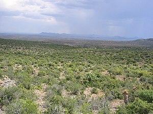 Teil des Karoo-Nationalparks