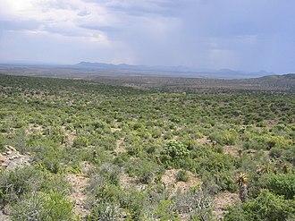 Karoo - Image: Karoo National Park