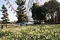 Kasai Rinkai Park 2011.1.JPG