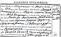 Katarina Ivanović birth certificate.jpg