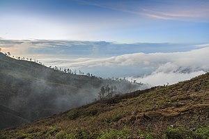 Banyuwangi Regency