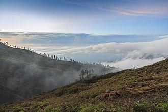 Banyuwangi Regency - Image: Kawah Ijen Indonesia Morning fog at the slopes of the volcano 01