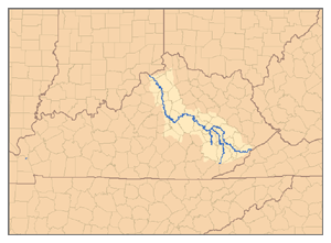Kentucky River - Watershed of the Kentucky River, showing the North Fork, Middle Fork, and South Fork tributaries.