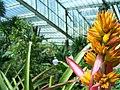 Kew Garden Visit (3656922118).jpg