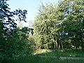 Khimselyshche, Cherkasy, Cherkas'ka oblast, Ukraine - panoramio (26).jpg