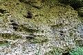 Klettergarten Gleißental-bjs180519-02.jpg