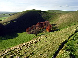 Knap Hill Earthwork in Wiltshire, England