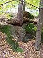 Kořen na kamenech.jpg
