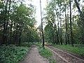 Kotelniki, Moscow Oblast, Russia - panoramio (108).jpg