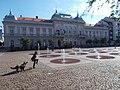 Kutyás fiú (Kligl Sándor) és a Városháza, Kossuth tér, 2017 Szolnok.jpg