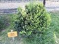 L'Alqueria d'Asnar - 2.jpeg