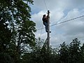 Lady pole climbing Telephone Engineer - geograph.org.uk - 467324.jpg