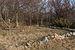 Landsort February 2014 21.jpg