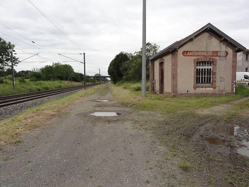 Laneuveville-aux-Bois (M-et-M) ce qui reste de l'ancienne gare
