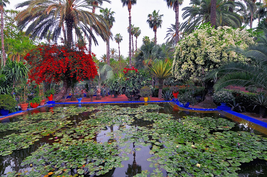 le jardin des majorelle 24 04 2010 jpg. Black Bedroom Furniture Sets. Home Design Ideas