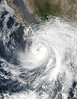 Tropical Storm Lidia (2017) Pacific tropical storm in 2017