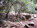 Lime Kiln in Ktalav Creek כבשן סיד בנחל קטלב - panoramio.jpg