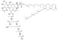 Lipid II.png