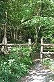 Little Park Wood - geograph.org.uk - 420483.jpg