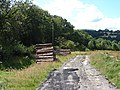 Log Pile - geograph.org.uk - 519354.jpg