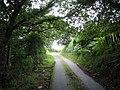 Lon Capel y Graig Lane - geograph.org.uk - 491104.jpg