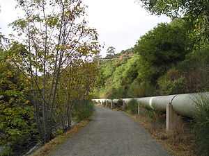 Los Gatos Creek Trail - Below Lexington Reservoir, the trail runs alongside the highway, electrical lines, a water pipe from the Reservoir, and the concrete culvert containing the creek, while still providing a walk in the woods.