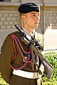 Luxembourg-5199 - Palace Guard (12727564073).jpg