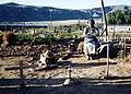 MaAnna with Shrine 1992.jpg