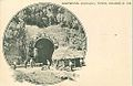 Madeira - Rabaçal, Tunel Grande N. 153.jpg