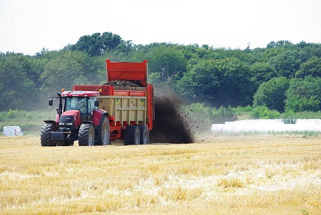 Hnojenie prírodným hnojom