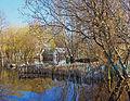 Marais de l'île de Fédrun à Saint-Joachim au début de printemps.jpg
