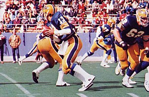 Dan Marino quarterbacks the Pitt Panthers of t...