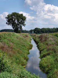 """Small river in rural Indiana. Rivers of this size are often referred to as a """"creek."""""""