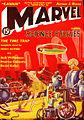 Marvel science stories 193811.jpg