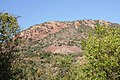 Mashovhela Bush Lodge, Louis Trichardt, Limpopo, South Africa (10185570474).jpg