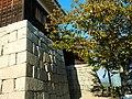 Matsuyama CastIe 松山城 - panoramio.jpg
