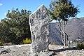Menhir du Col de Bes.jpg