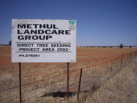MethulRedSoilWheatCountry.jpg