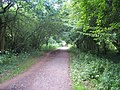 Mid Devon , Railway Line Footpath - geograph.org.uk - 1264618.jpg