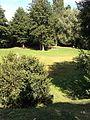 Mobeye-ÉtéDesVilles-Bernay (Eure)-217.jpg