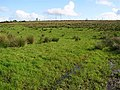Mondooey Upper Townland - geograph.org.uk - 999607.jpg